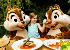 Disney Free Dining Offer